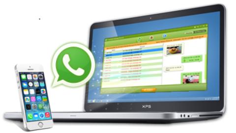 Tenorshare WhatsApp Recovery Licenta Gratis