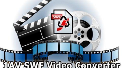 1AV SWF Video Converter Licenta Gratis