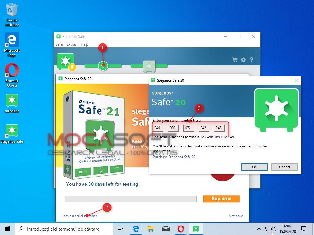 Inregistrare Steganos Safe licenta gratuita
